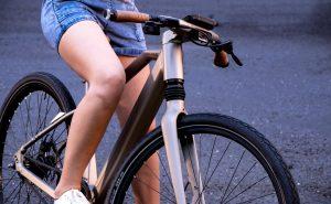 Calamus One Ultra Drive E Bike